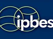 Saiba mais sobre a Plataforma Intergovernamental para Biodiversidade e Serviços Ecossistêmicos (IPBES)