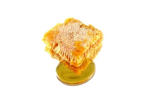 Mel de abelhas nativas tem alto valor agregado