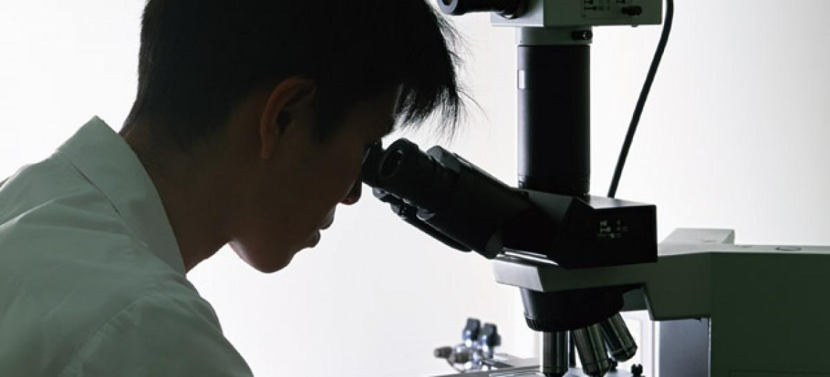 Jovens pesquisadores poderão participar da avaliação global de biodiversidade