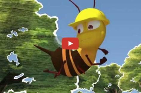 As abelhas e sua relação com a agricultura e o meio ambiente (Ep. 1)