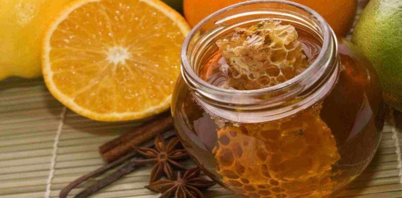 Brasil tem melhora na exportação de mel