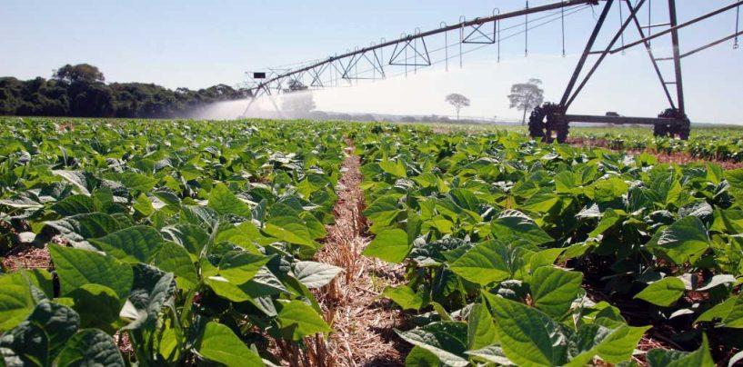 Brasil e países vizinhos são modelo de intensificação sustentável para o mundo