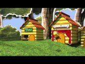 As abelhas e sua relação com a agricultura e o meio ambiente (Ep. 2)