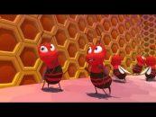 As abelhas e sua relação com a agricultura e o meio ambiente (Ep. 3)