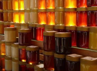 Capacitação sobre mel na UPF integra assistentes técnicos da Emater