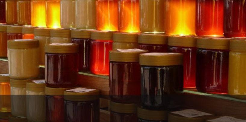 Cooperativa de Sorocaba recebe apoio do Projeto Microbacias 2