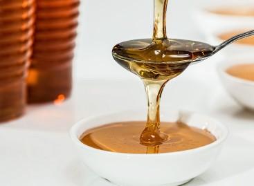 Produtores de mel se beneficiam com Denominação de Origem
