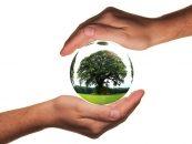 COP 21: representantes de 195 países aprovam acordo global do clima