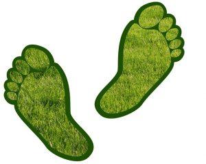 pegada verde small