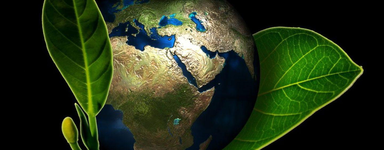 Dia da Terra 2019 – ONU pede compromisso com combate às mudanças climáticas