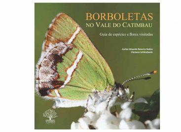 Livro cataloga 137 espécies de borboletas no Vale do Catimbau