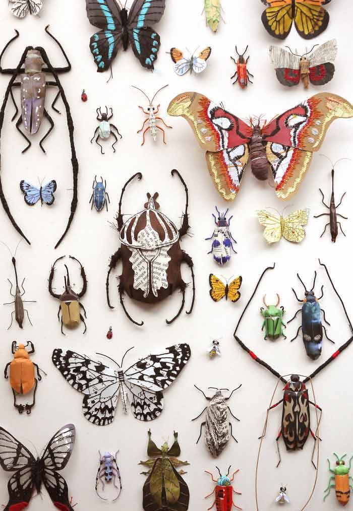insetos---Crédito-Kate-Kato