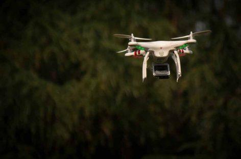 Pesquisa testa uso de drones para ajudar a natureza