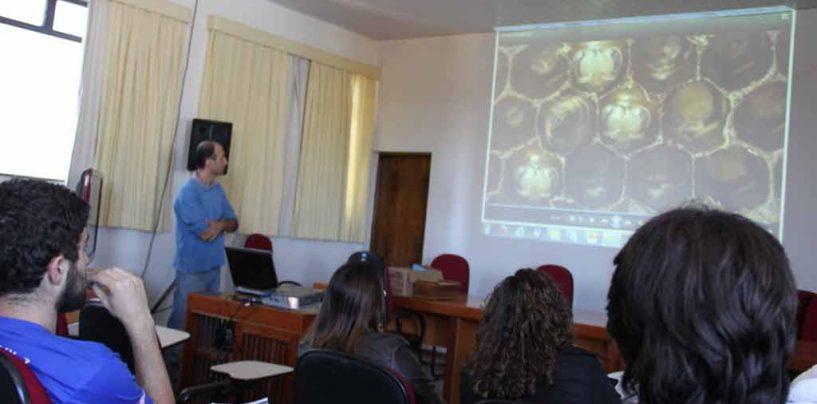 Equipe de robótica do Sesi visita universidade para compreender as abelhas
