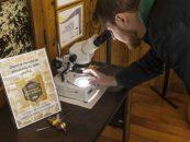 Exposição destaca importância ecológica e econômica das abelhas