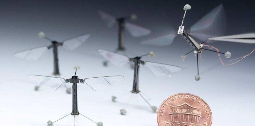 Abelhas-robôs poderão agir como polinizadoras