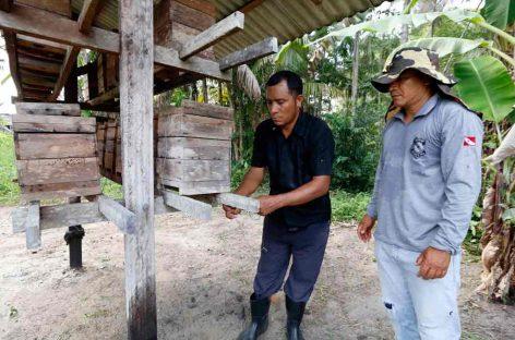 Produção de mel promove reinserção de presos e conservação de abelhas nativas