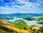 Pesquisadores preparam diagnóstico da biodiversidade brasileira