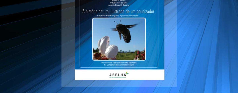 A.B.E.L.H.A. lança livro sobre abelhas mamangavas