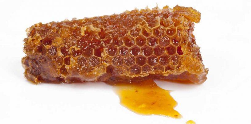 Alambique mineiro desenvolve aguardente de mel