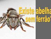 Videocast #1 – Existe abelha sem ferrão?