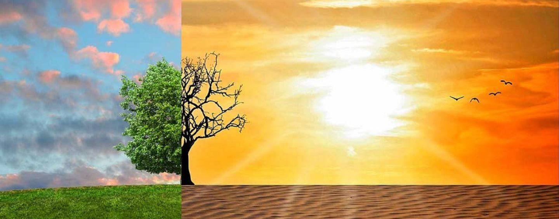 Acordo de Paris sobre mudanças climáticas: os compromissos