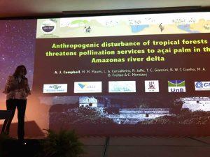 simpósio sobre polinizadore Trends in plant-pollinator interaction in tropics México 2017