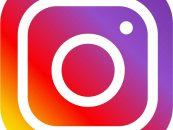 A.B.E.L.H.A. estreia no Instagram