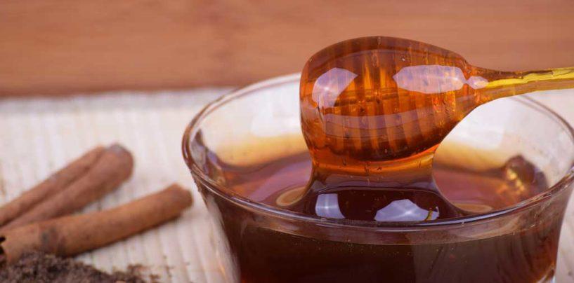 Mel orgânico gera oportunidades para apicultores de SC