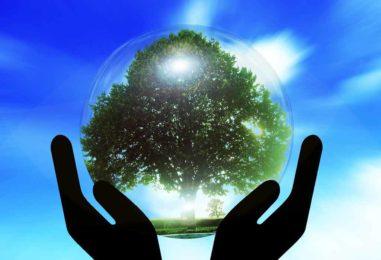 """Bill Gates: """"A inovação é a chave para revertermos as mudanças climáticas"""""""