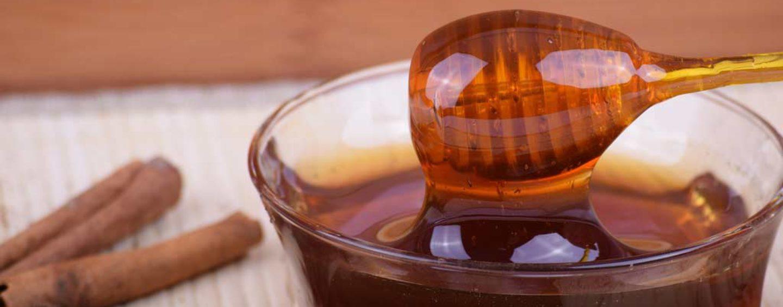 Setor de apicultura se mantém firme e crescente em todo o País