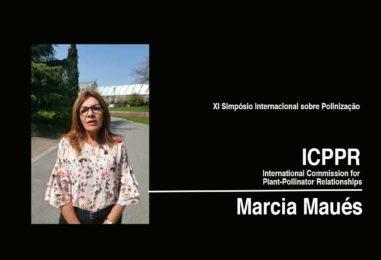 ICPPR 2018 – Márcia Maués