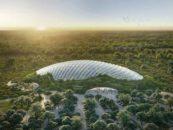 Conheça a Tropicália: a maior estufa de floresta tropical do mundo