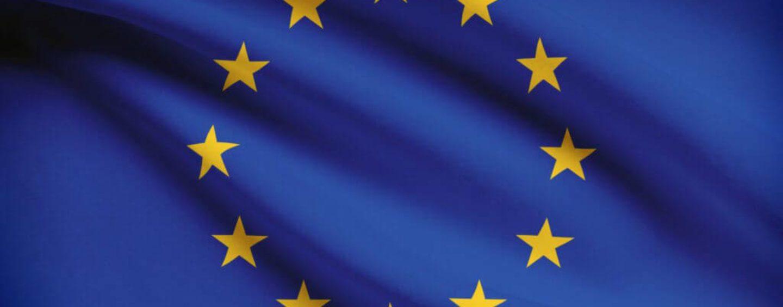 União Europeia lança iniciativa para combater o declínio de polinizadores silvestres