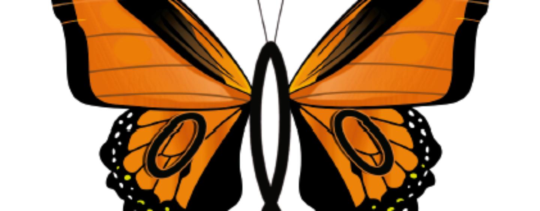 Vem aí o XII Curso de Inverno em Entomologia Agrícola