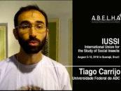 IUSSI 2018 – Tiago Carrijo