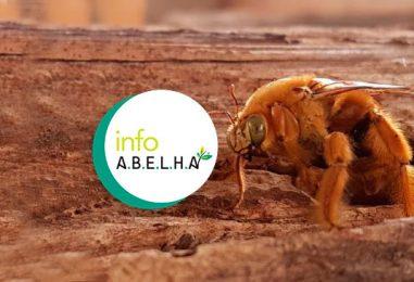 InfoA.B.E.L.H.A. – Plataforma de conhecimento técnico e científico